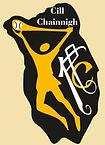 Kilkenny Camogie Crest 3.jpg