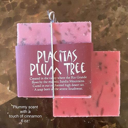 SOAP-Placitas Plum Tree