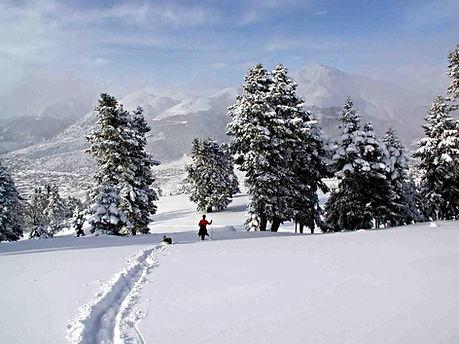 Winter in Luxury Cabins in Greece Chalet Likouresi Village