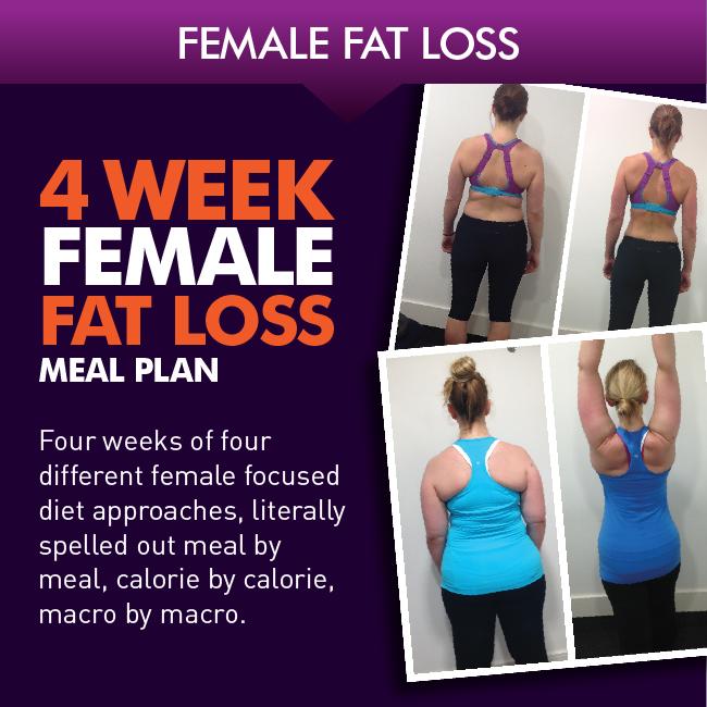fat shredding diet female