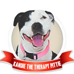Sat 1/14 Kandie's Paint Your Pet Fundraiser
