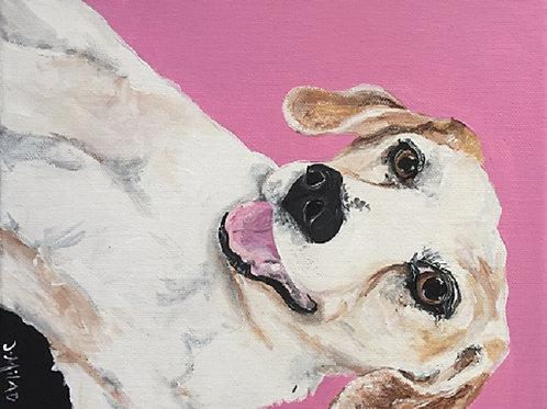Sat 4/15 Paint Your Pet Special!