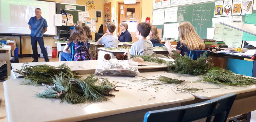 Conférence sur la végétation des milieux humides