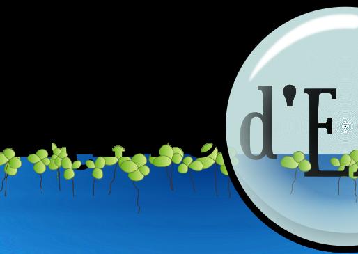 Mois de l'eau 2020 : Lancement de la deuxième édition du concours photo Lentille d'eau