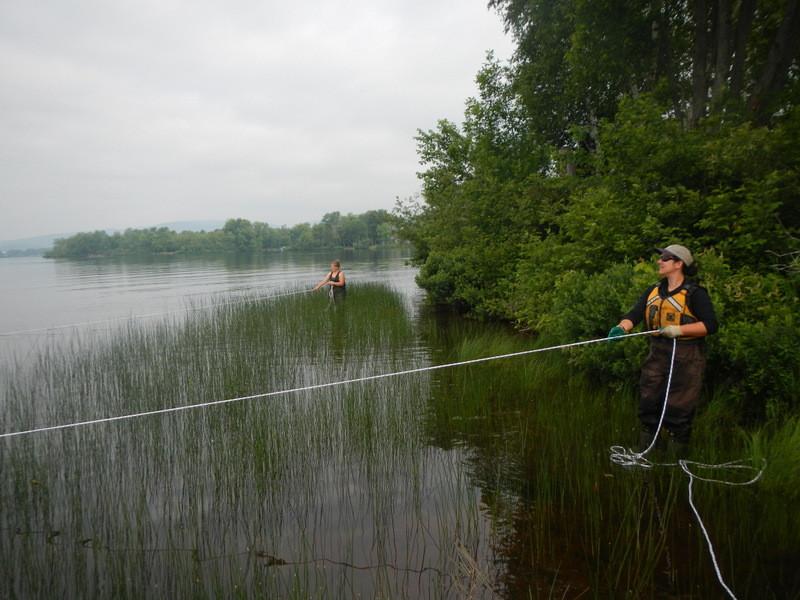 Seine ramanée au lac Maskinongé