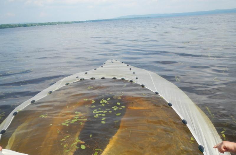 Seine ramenée au lac Maskinongé