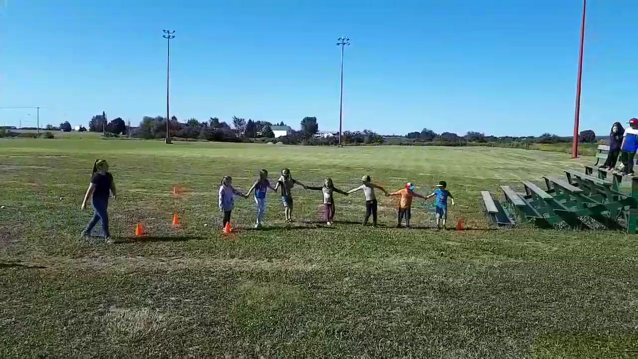Activité du Méandre