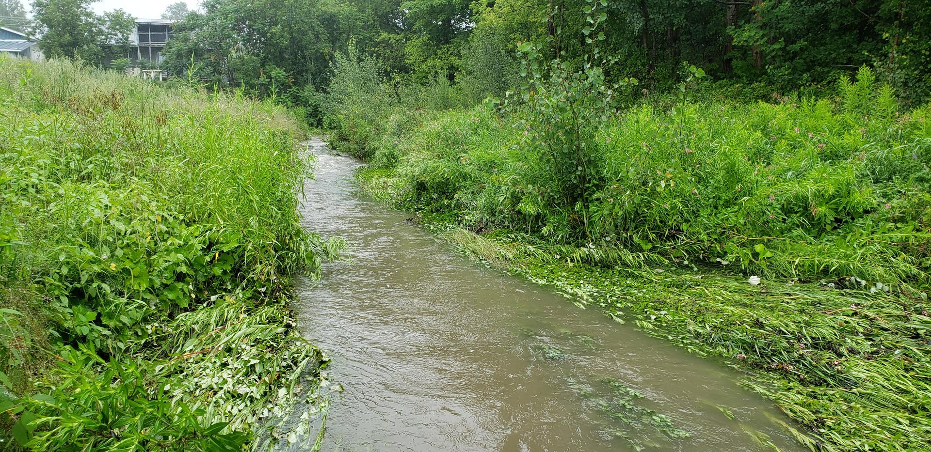 Ruisseau Comeau par temps de pluie