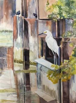 Elegant Egret, Watercolor