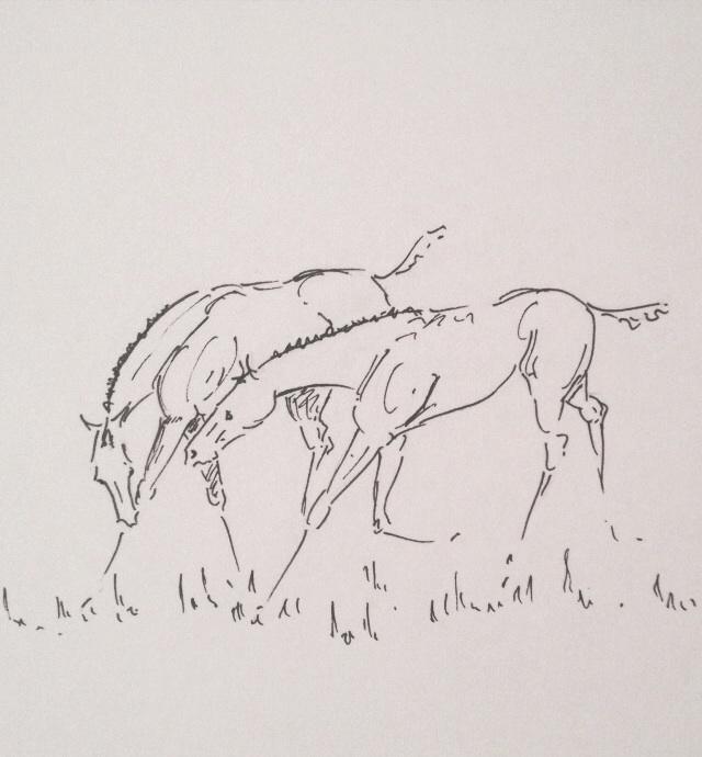 Foals en jeu