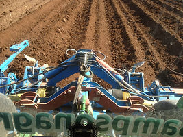 Sub Soliling and Cultivations
