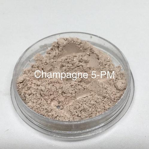 Champange Pure Mineral Eyeshadow