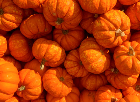 The Secret to Glowing Skin this Fall!