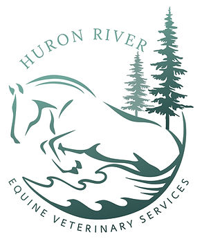 Huron-River-Equine-Veterinary-Services_L