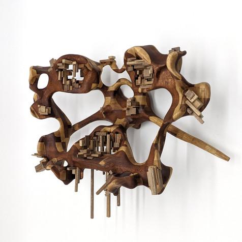 Untitled (triple vertebrae)