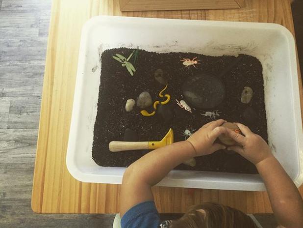 #bug and #grubs ._._._#sensorial #play.j