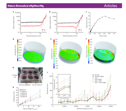 New Paper Published in Nature Biomedical Engineering
