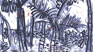floresta 3