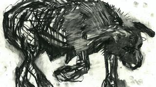 mondo cane 4