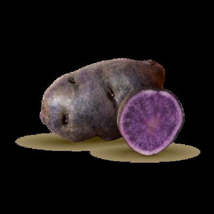 PurpleBlue.png