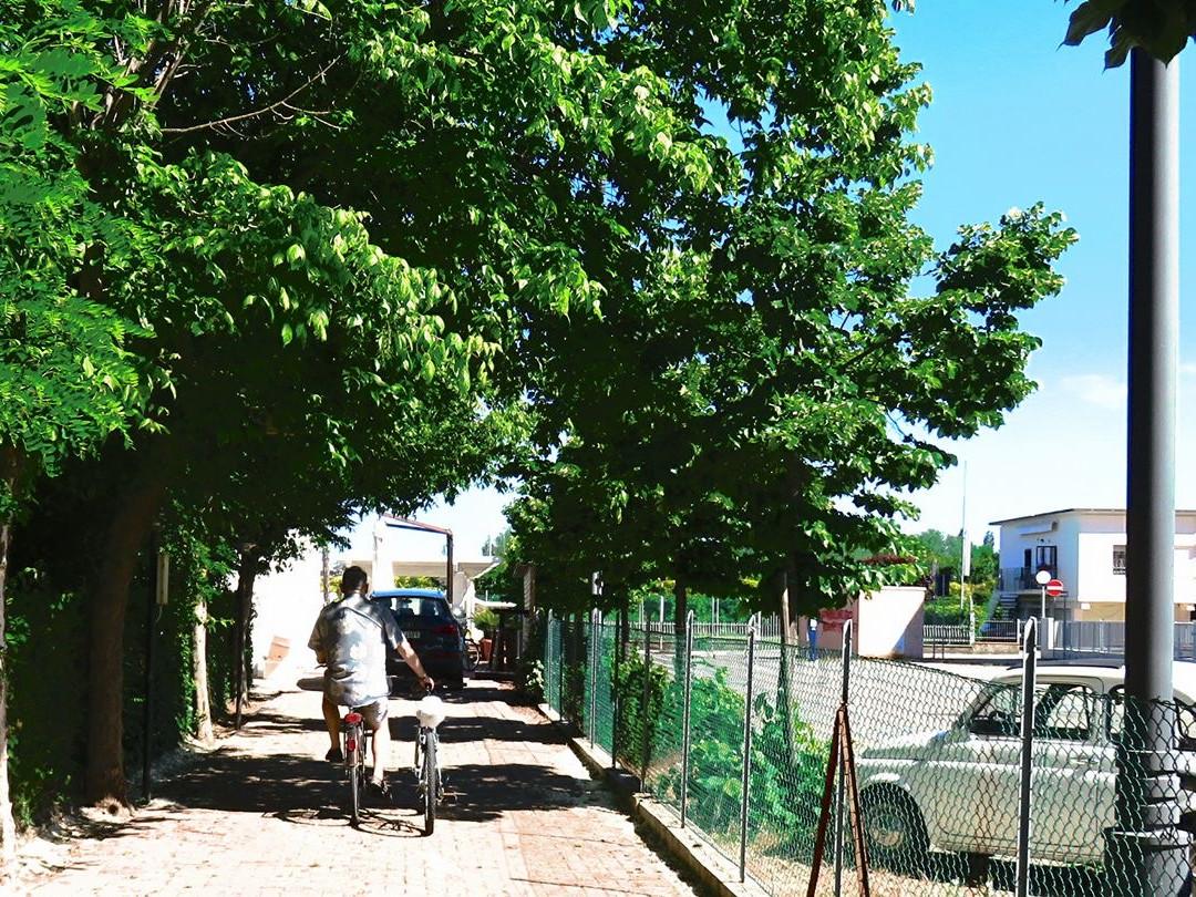 piscina Acquapark Gatteo Mare Gobbi Hotels