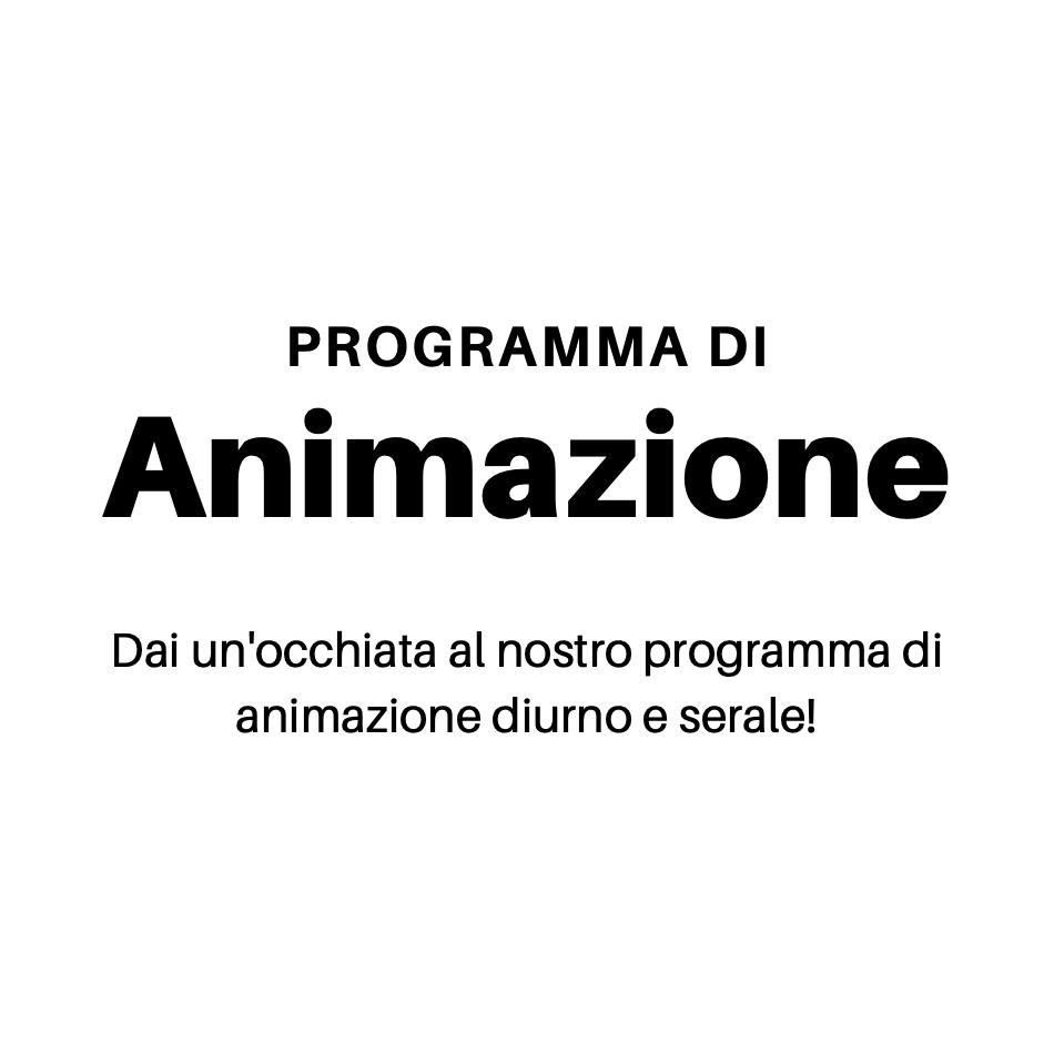 Clicca per visualizzare il programma di animazione serale