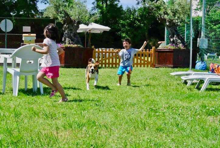 Due bambini che corrono in un prato verde con il loro cane