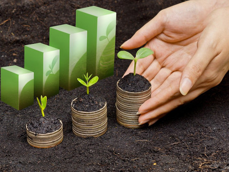 How Ethical Investing Can Help Your Money Matter