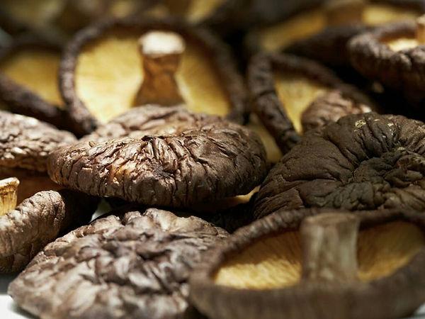 Hejia Mushroom