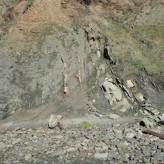 Cretaceous seds