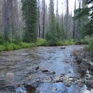 Bargamin Creek, Idaho