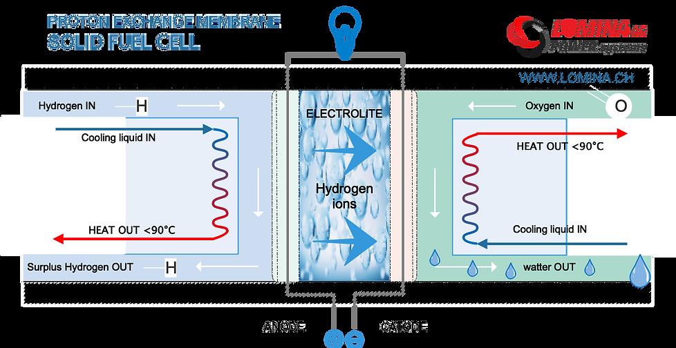 proton exchange membrane fuel cell scheme