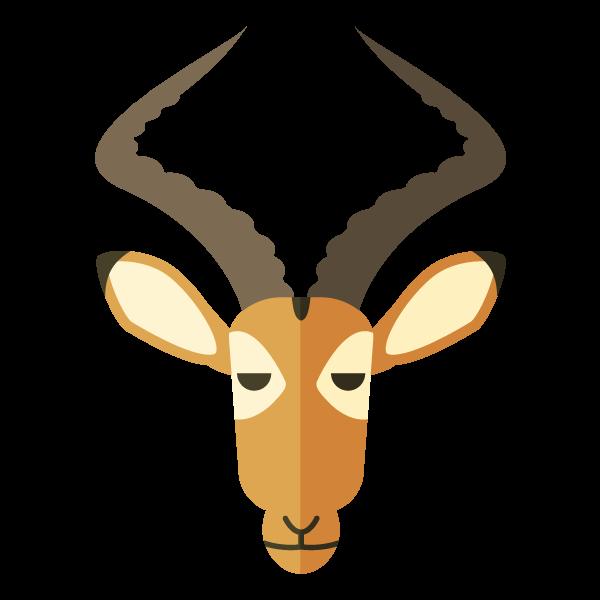 First Safari