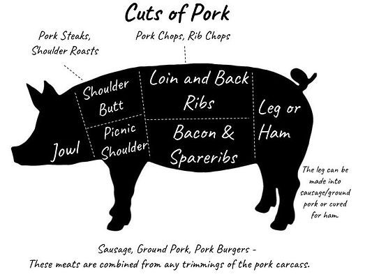 Cuts of Meat from Pork