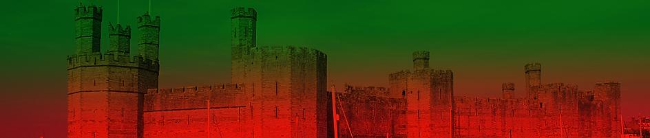 Castle Image.png