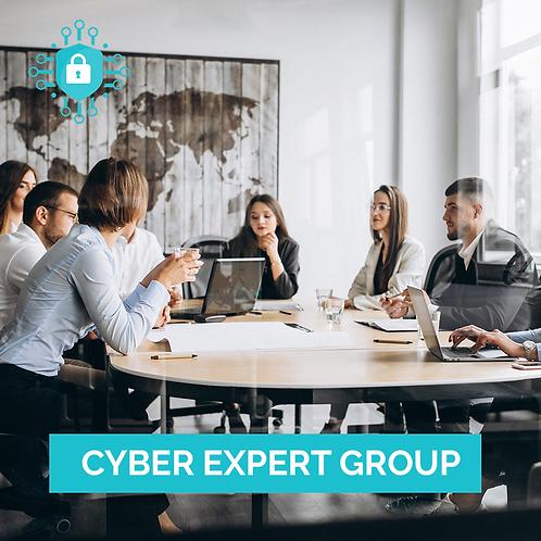 Cyber Expert Group