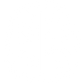 Intelligence icon.png