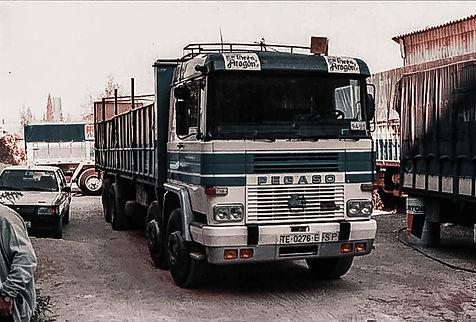 camion-pegaso-transalcaniz-transalcañiz.transporte-nacional-de-mercancias