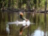 amazon river fishing adventures