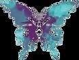 TerrAbundance_Butterfly.png