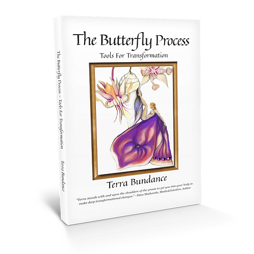 The Butterfly Process Book written by me