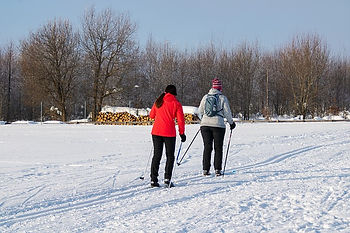 winter-3945779_640.jpg