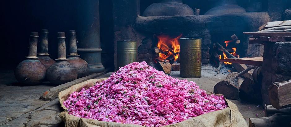 The Art of Perfume-Making; Indian Kannauj Twinning Provence and Paris