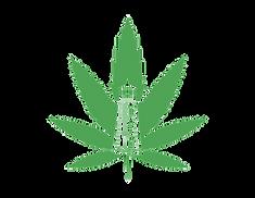 5x7 COASTAL logo.png