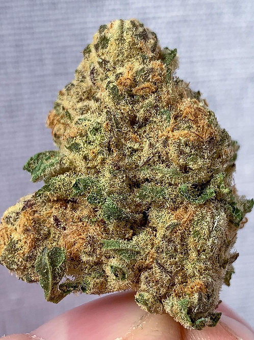 Jungle Fruit +AAA