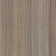 morland_driftwood_1.png