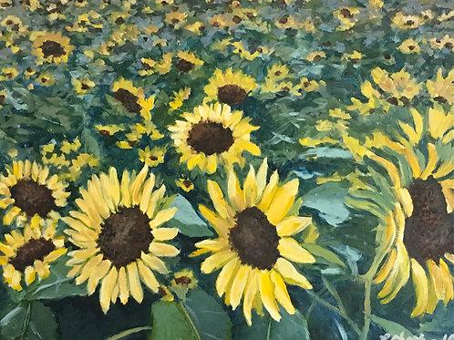 "Sunflower Field acrylic painting on canvas, 16"" x 20"" framed"