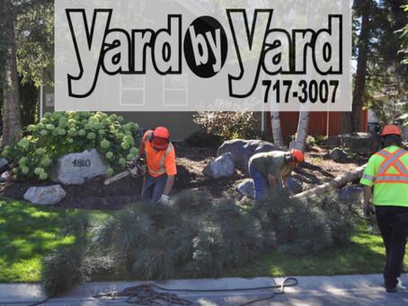 Okanagan Employer Spotlight: Yard by Yard