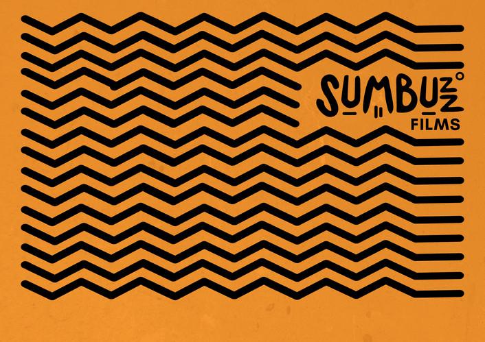 SUM-BUZZ-zig.jpg