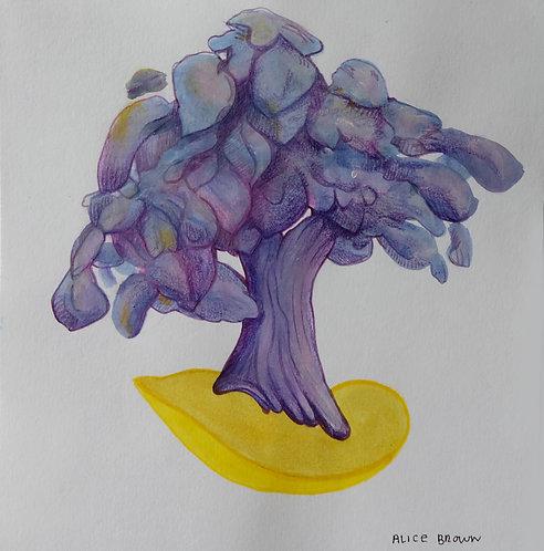 Tree 30